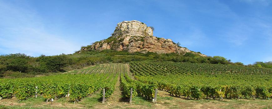 Pouilly fuiss en sa ne et loire 71 domaine sophie cinier - Salon des vignerons independants rennes ...